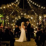 Winter garden wedding December 31 2011