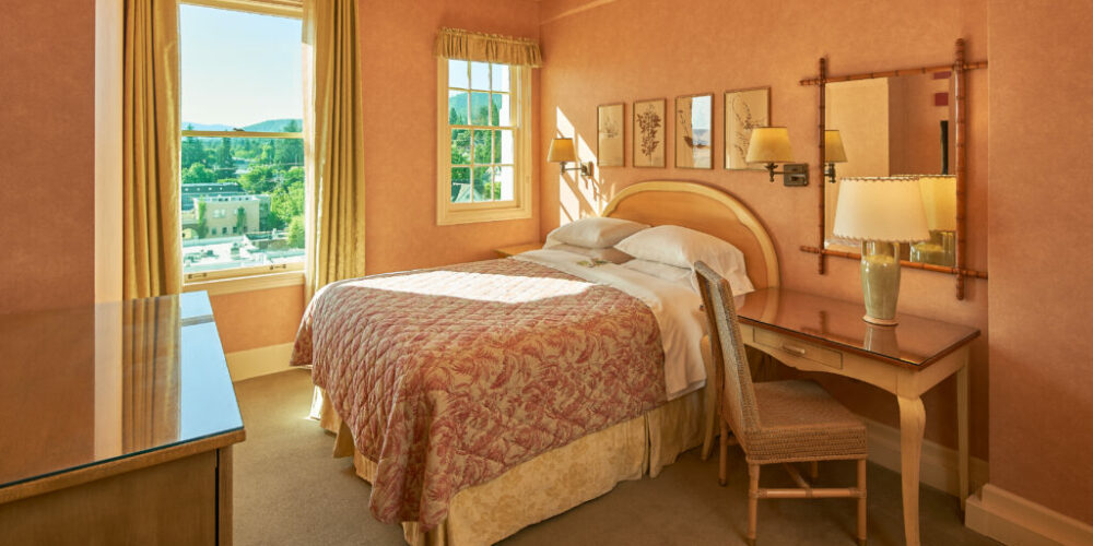 Relax in a traditional European boutique style room with décor to match. Room offers comfortable Queen bed. Rooms tend to be cozier and primarily located on our third and fourth floors.View Room