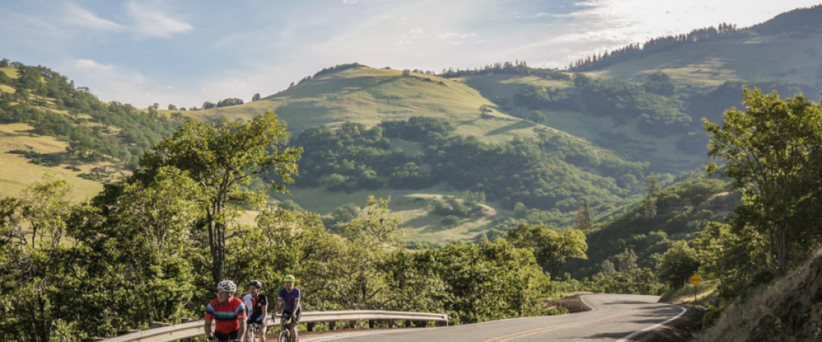 We are all about the great outdoors, water and mountain fun, eating, sipping and experiencing unique adventures. Take a little exploration of your own along the Rogue Valley Food Trail featuring local farms, creameries, breweries, restaurants and more.Learn More